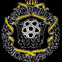 sc-heerenveen-logo225.png